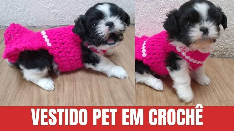 Como Fazer Vestido de Crochê para PET